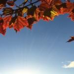 ciel_automne_1