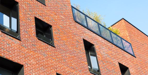 Usine transformée en logements : comment faire entrer la lumière ? Témoignage de Sabine à Lille